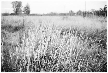 Tempelhof f/2